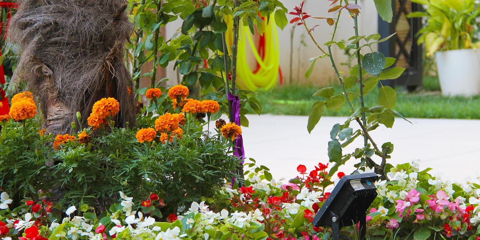 bahçe paradise life öğrenci konutları